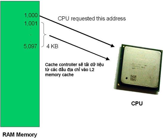 Memory cache controller làm việc như thế nào