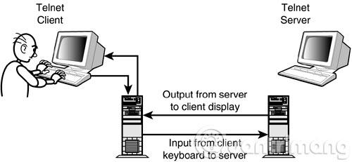 Kết nối Telnet