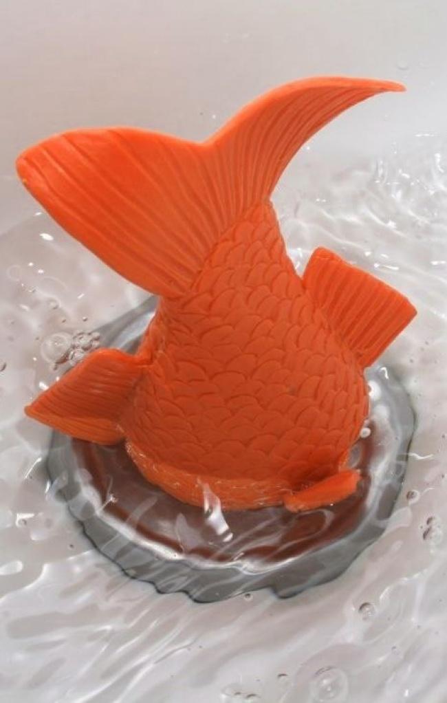 Nút cá vàng