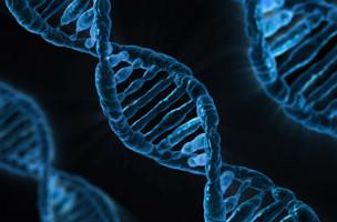 Tìm thấy biến thể gen di truyền liên quan đến phản ứng viêm do virus