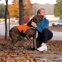 10 lợi ích bất ngờ khi nuôi chó có thể bạn chưa biết
