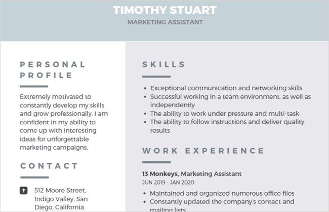 Mẫu resume hiện đại chuyên nghiệp