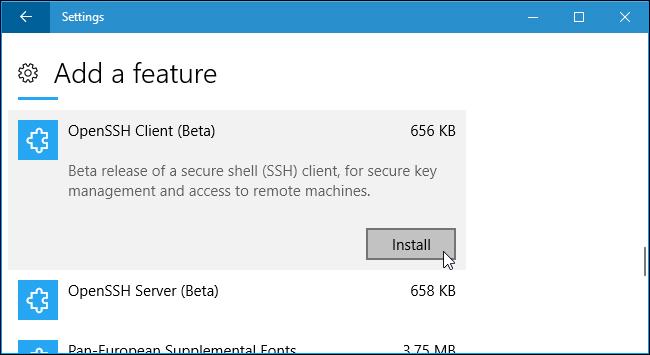 Nhấn vào Install để cài đặt máy khách SSH