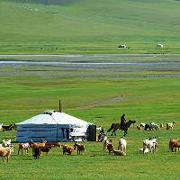 Tượng đài Thổ Nhĩ Kỳ 1.300 năm tuổi phát hiện ở thảo nguyên Mông Cổ