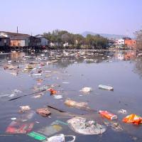 Thiết bị giấy có thể xác định nước bị ô nhiễm
