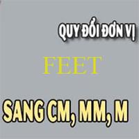 Đố bạn: 1 feet bằng bao nhiêu mét?