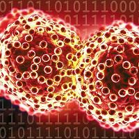 Các nhà khoa học tìm ra protein có thể ngăn ngừa ung thư di căn