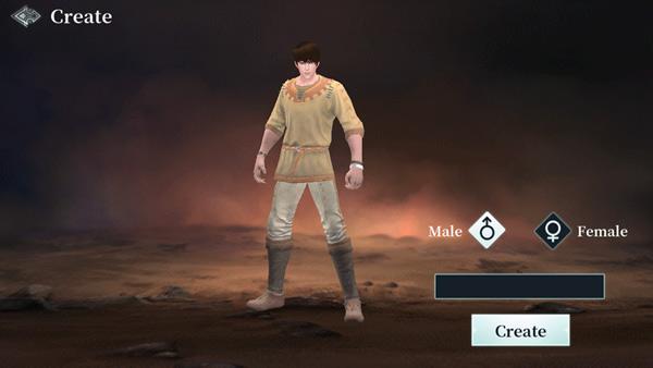 Trước khi bắt đầu chơi, các game thủ sẽ phải lựa chọn một trong hai loại hình nhân vật